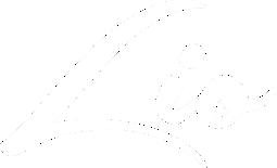 logo-lio-org-white